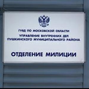 Отделения полиции Новомосковска