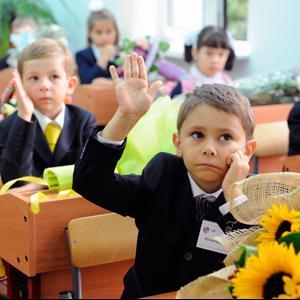 Школы Новомосковска