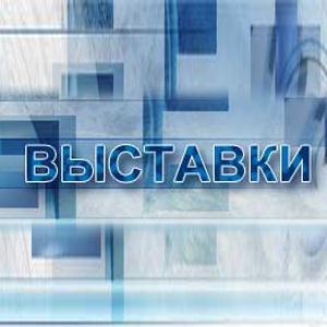 Выставки Новомосковска